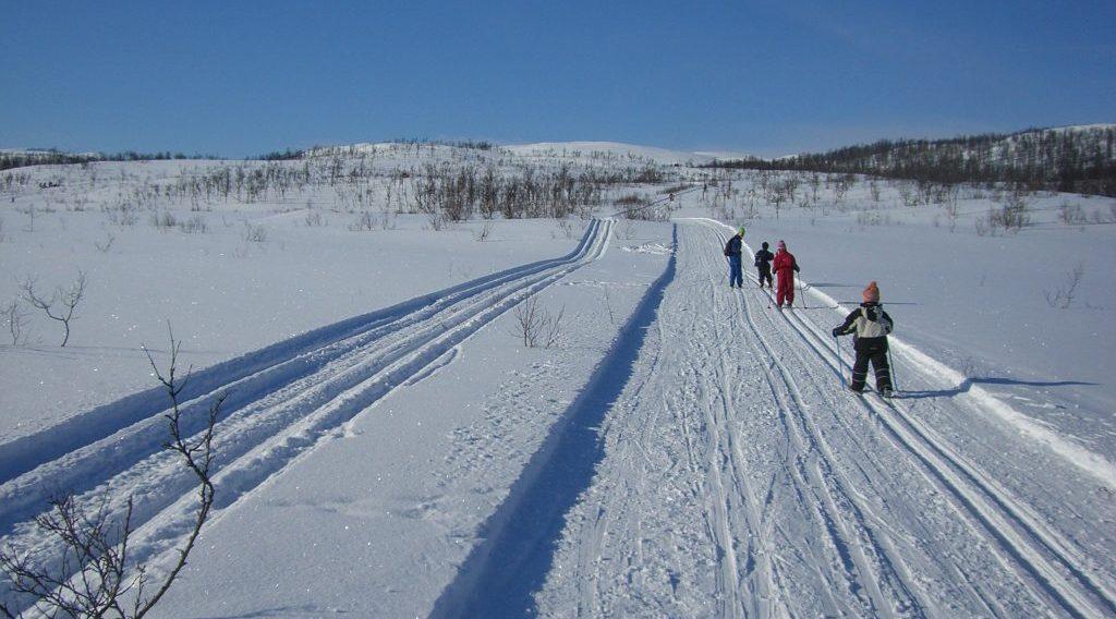 På indre Senja er det flott skiterreng, slake bakker og preparerte løyper-